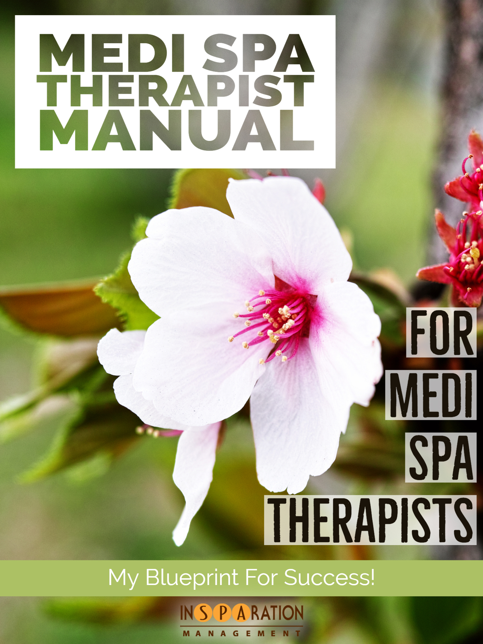 Therapist Manual